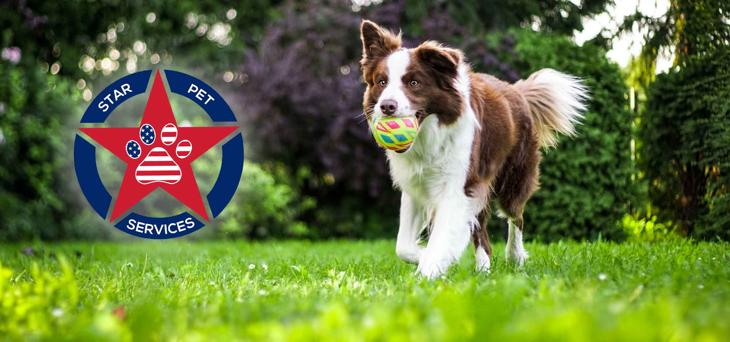 Star Pet Service provides clean fresh yards